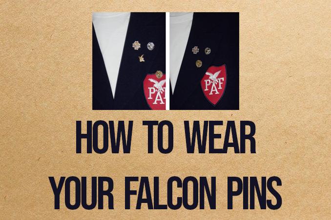 VP Trish: Falcon Pins